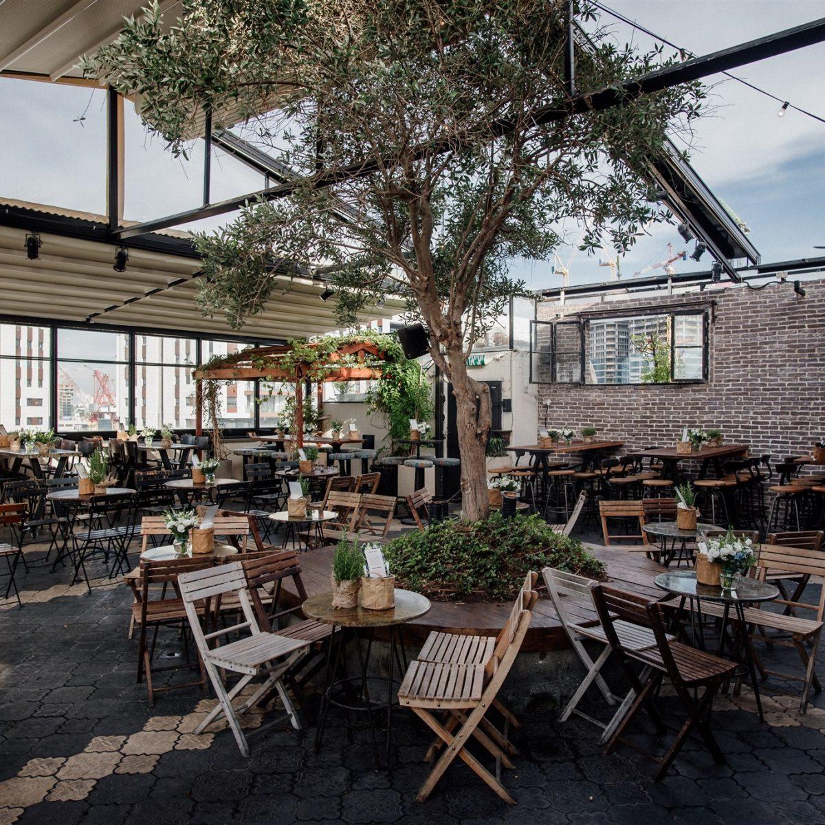 הגג של סורה מרה עם עץ זית מרכזי - The roof top outside section of Suramara with a centred olive tree